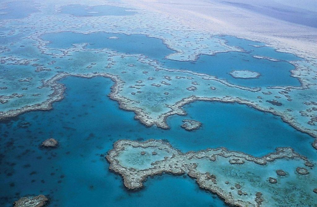 Great Barrier Reef WeddingsAbroad.com