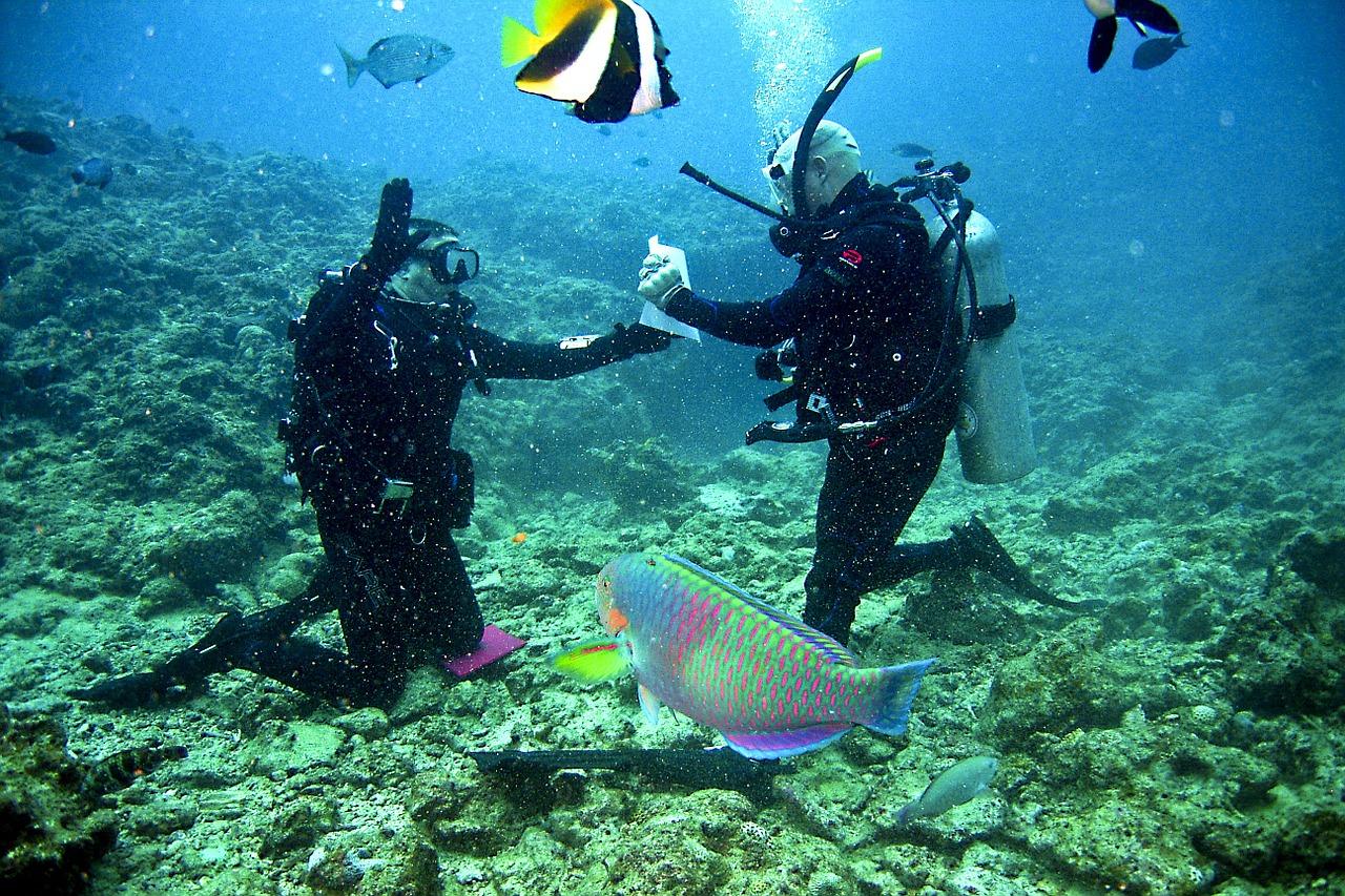 Weddings at Sea - Yacht Wedding Dive Weddings Scuba Diving Underwater Tobago Destination Wedding Abroad WeddingsAbroad.com